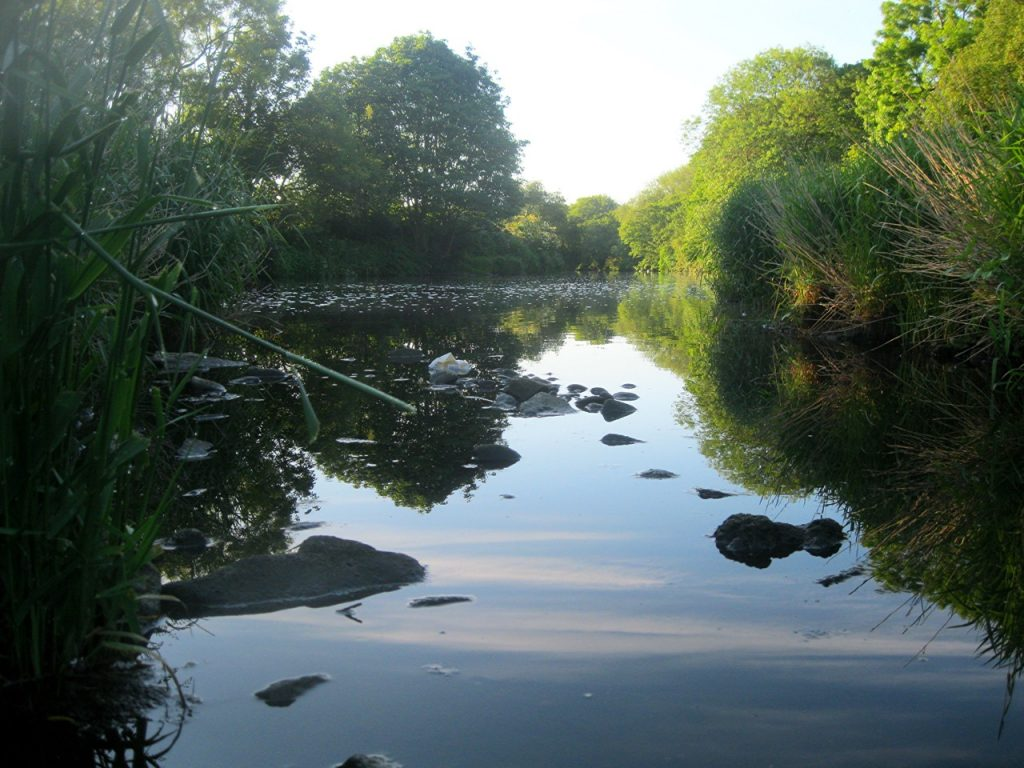 River Aire at Kirkstall Valley Nature Reserve